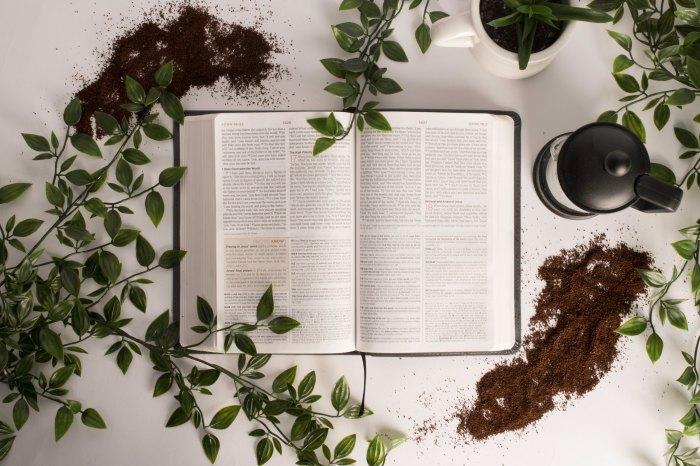 Seven Revelations of the True Gospel Message:Overview
